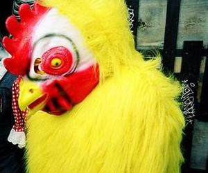 Not the chicken suit in question, but you get the idea.