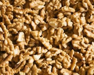 Walnuts are hot commodity in the 'nut mafia.'