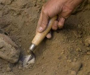 Stock photo of an archeologist digging.