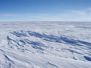Sastrugi stick out from the snow surface in this photo near Plateau Station in East Antarctica.