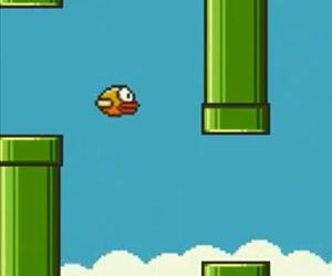 A screenshot from a gameplay video of Flappy Bird.