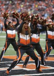A Cincinnati Bengals cheerleader cheers during a game between the Cincinnati Bengals and the San Diego Chargers Sunday, Jan. 5, 2014, in Cincinnati.