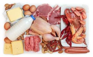 People between 50 and 65 should cut down on animal protein if they want to live longer, researchers say.