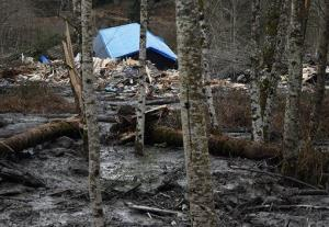 A fatal mudslide brought debris down the Stillaguamish River near Oso, Wash., Saturday, March 22, 2014, stopping the flow of the river and destroying several homes.