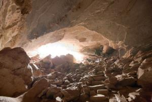 Neotrogla insects live in Brazilian caves.