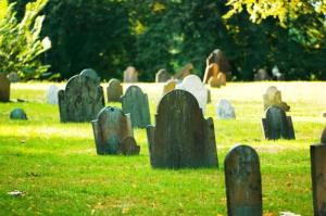 A woman has been charged for taking a toy from a child's grave.