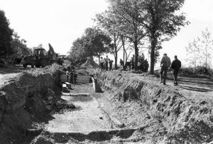 This Sept. 13, 1990 photo shows a mass burial trench for adults on New York's Hart Island. Since 1869, more than 800,000 people have been laid to rest at the potter's field.