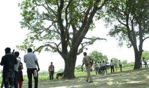 In this Saturday, May 31, 2014 file photograph, a police dog stands near the tree where two teenage girls were found hanging in the northern Indian state of Uttar Pradesh.