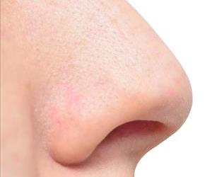 Stock photo of a nose.