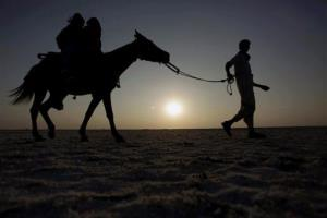 In this Thursday, Jan. 9, 2014 photo, Indian tourists enjoy riding a horse in the Thar Desert, about 311 miles from Ahmadabad, India.