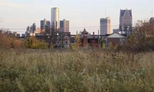 This Oct. 24, 2012, photo shows an empty field north of Detroit's downtown.