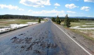 This photo provided by the National Park Service shows heat damage to a road in Yellowstone National Park.