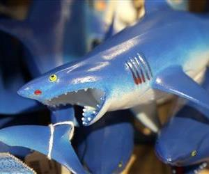 In this July 2, 2014 photo, a bin is filled with plastic toy sharks in a souvenir shop in Chatham, Mass.