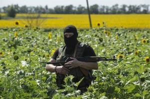 A pro-Russian fighter guards the crash site of Malaysia Airlines Flight 17 near the village of Hrabove, eastern Ukraine, Sunday, July 20, 2014.
