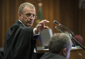 State prosecutor Gerrie Nel gestures as the Oscar Pistorius murder trial resumes in Pretoria, South Africa, Thursday, Aug. 7, 2014.