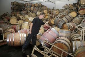 Cellar worker Daniel Nelson looks over toppled barrels of Cabernet Sauvignon following an earthquake at the B.R. Cohn Winery barrel storage facility in Napa, Calif.