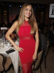 Sofia Vergara attends the Hollywood Foreign Press Association's Grants Banquet at the Beverly Hilton hotel on Thursday, Aug. 14, 2014, in Beverly Hills, Calif.