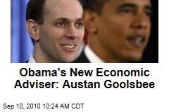 Obama's New Economic Adviser: Austan Goolsbee
