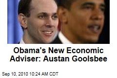 Obama's New Economic Adviser: Austan Goolsbee