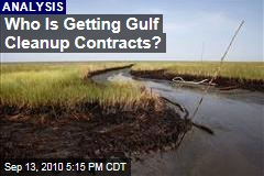 Who Is Getting Gulf Cleanup Contracts?