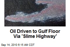 Oil Driven to Gulf Floor Via 'Slime Highway'
