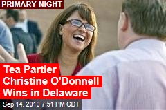 Tea Partier Christine O'Donnell Wins in Delaware