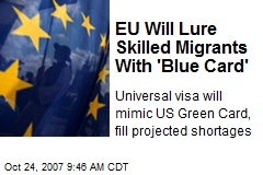 EU Will Lure Skilled Migrants With 'Blue Card'