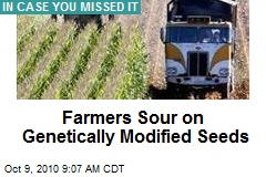 Farmers Souring on Genetically-Modified Seeds