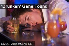 'Drunken' Gene Found