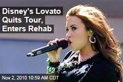 Disney's Lovato Quits Tour, Starts Rehab