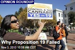 Why Proposition 19 Failed