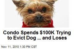 Condo Spends $100K Trying to Evict Dog ... and Loses