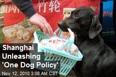 Shanghai Unleashing 'One Dog Policy'