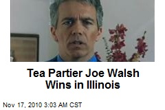 Tea Partier Joe Walsh Wins in Illinois