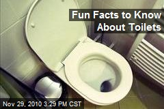 Fun Facts to Know About Toilets