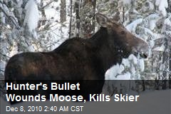 Hunter's Bullet Wounds Moose, Kills Skier