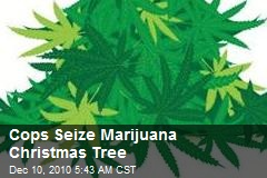 Cops Seize Marijuana Xmas Tree