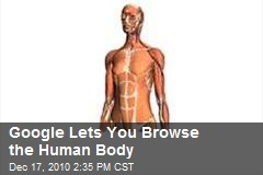 Google Lets You Browse the Human Body