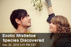 Exotic Mistletoe Species Discovered