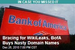 Bracing for WikiLeaks, BofA Buys Nasty Domain Names