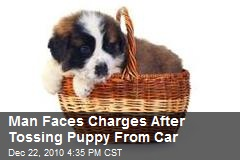 Man Faces Charges After Tossing Puppy From Car