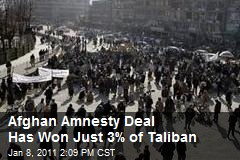 Afghan Amnesty Deal Has Won Just 3% of Taliban