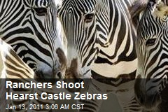 Ranchers Shoot Heart Castle Zebras