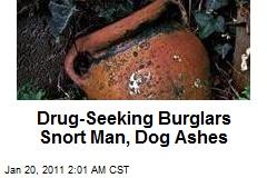 Drug-Seeking Burglars Snort Man, Dogs' Ashes
