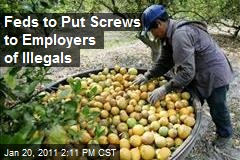 Feds to Put Screws to Employers of Illegals