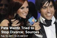 Pete Wentz Tried to Stop Divorce: Sources