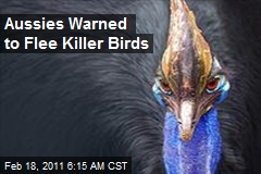 Aussies Warned to Flee Killer Birds