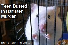 Teen Busted in Hamster Murder