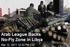 Arab League Backs No-Fly Zone in Libya