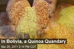 In Bolivia, a Quinoa Quandary